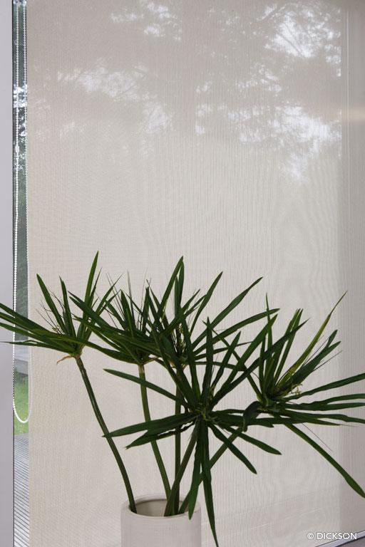 8860 Ecru - Sunvision - Store vertical